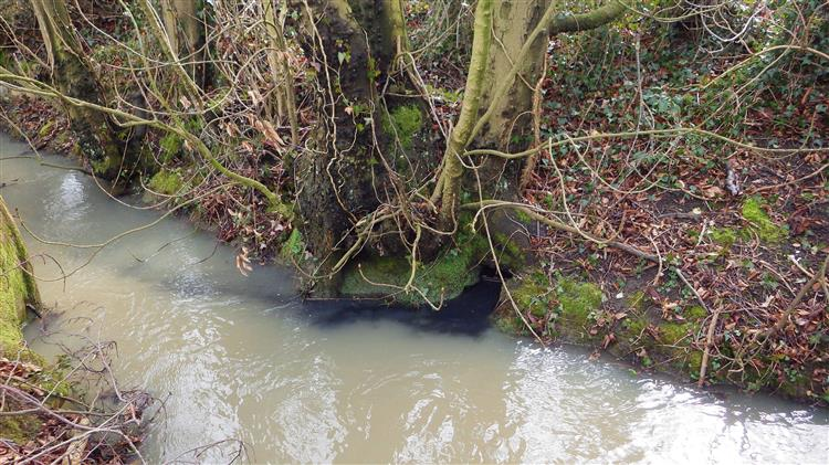 Company fined £20,000 after land spreading leads to pollution