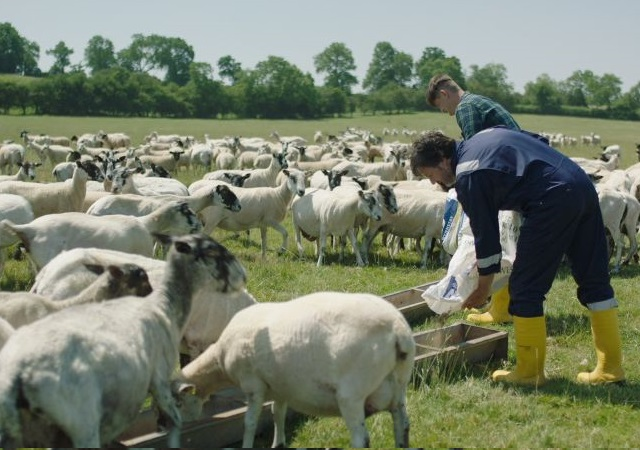 Health and Safety Executive calls for 'new attitudes' on farm safety