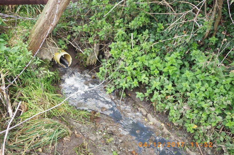 Farmer ordered to pay £4,000 after 'significant' water pollution