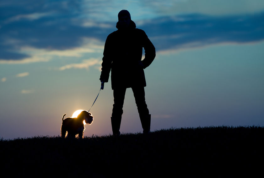 Scottish rural sector launches 'Your Dog - Your Responsibility' campaign