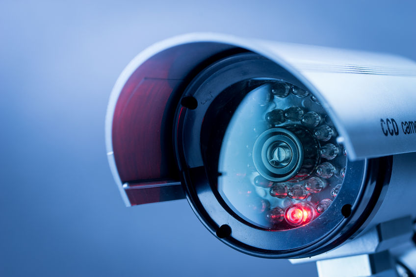 Scotland to introduce compulsory CCTV in abattoirs