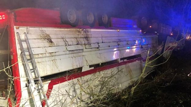 Firefighters stabilised the vehicle and used hydraulic cutting equipment to release 39 bulls (Photo: Northern Ireland Fire Service)