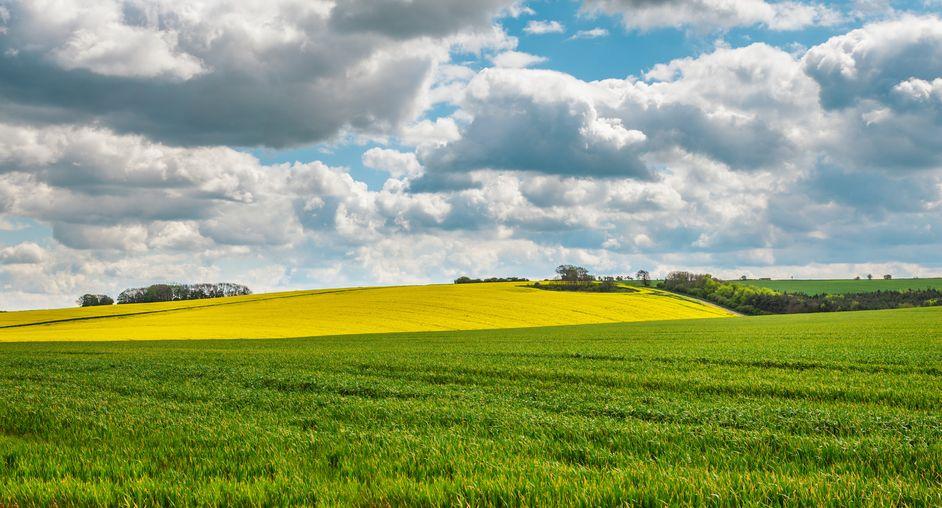 Non-farming buyers set the pace in English farmland market