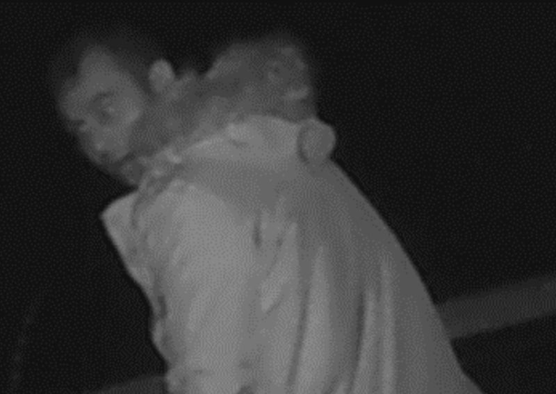 Police issue CCTV image of man suspected of stealing sheep