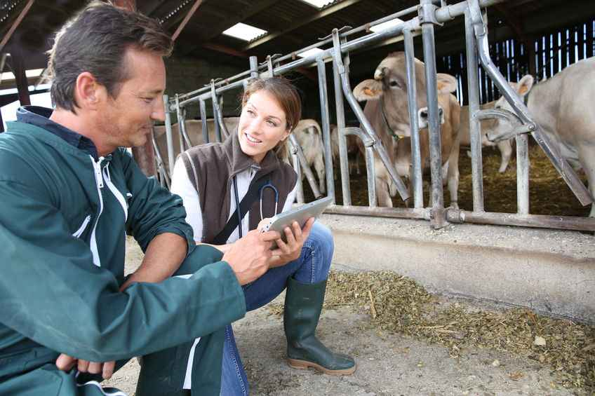 The veterinary industry has launched a questionnaire to gather experiences of discrimination