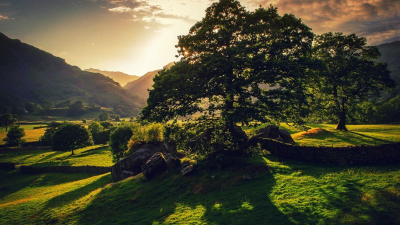 Grant scheme offers £50,000 for new rural projects