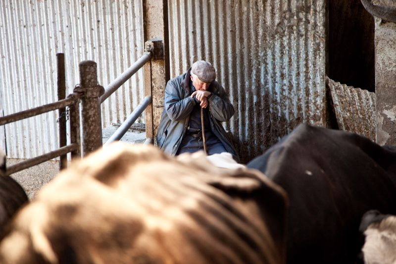 Campaign to highlight importance of farmers' mental health