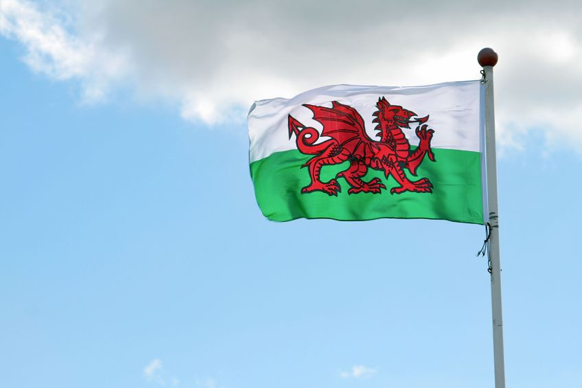 Welsh agricultural exports 'must prioritise the Welsh dragon' once the UK leaves the EU, an industry leader has urged