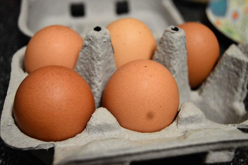 Stronger deterrents needed for food fraud crimes, egg industry says