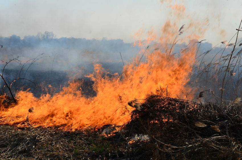 Concerns increase over risk of farm fires following dry, warm weather