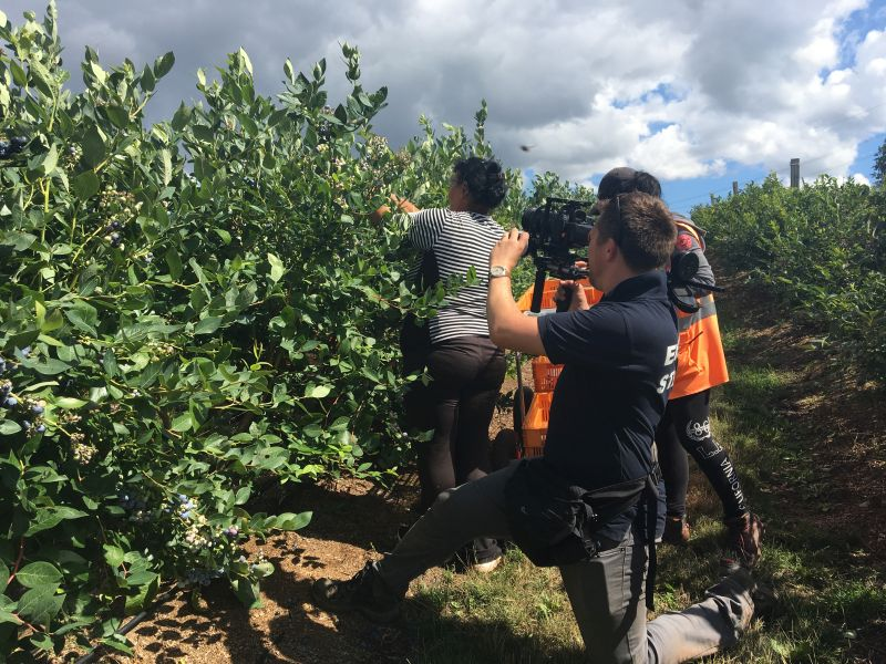 'Becoming a Champion': Video guides next generation of crop pickers