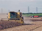 UK farming policy needs overhaul to tack...