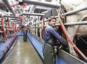 Dairy crisis meeting planned after price...