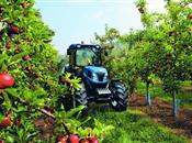 UK fruit and veg growers see growth in j...