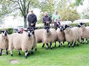 Farmers seek supermarket commitment on l...