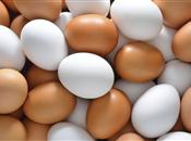 Norfolk egg farm to become first self-su...