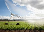 CLA warns against risks to food security...
