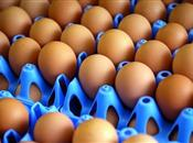 Tesco caged egg petition reaches 75,000 ...