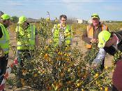 Anglia Farmers' Next Generation visit so...