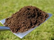 Soils could store an extra 8 billion ton...