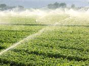 NFU stresses importance of horticulture'...