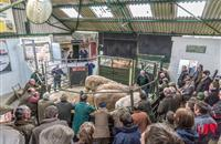Derby Livestock Market closure a 'bitter blow' for farmers