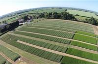 Innovations in arable cropping on display