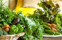 MEPs create draft plans to tighten up controls from farm to fork with goal to make food safe and wholesome