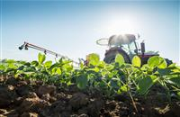 Glyphosate use extended for a further 18 months