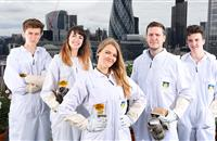 Young apprentices hired to safeguard British bee industry