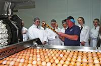 A level students have an eye on egg technology