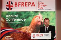 Clear product labelling 'crucial' as more retailers end sales of caged eggs
