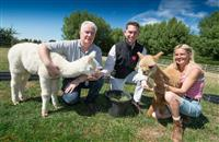 Alpaca business grows thanks to seven-figure funding from Clydesdale Bank