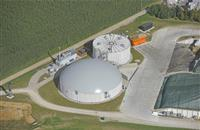 Farmers with anaerobic digestion urged to tap into growing demand for green energy in Europe