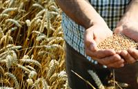 £3m awarded to boost sustainable agriculture