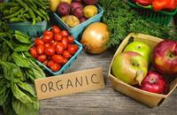New report shows organic growing at a substantial rate in Europe and US