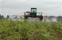 Bentazone herbicide 'should not be renewed due to safety concerns', MEPs say