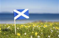 St Andrew's Day: Scotland launches new £3m scheme to build food and drink sector