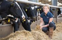 Poor silage costly to UK livestock farmers