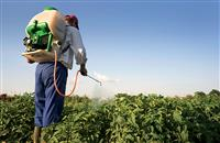 €1.3 billion lost every year across the EU due to fake pesticides