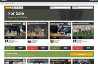 Online livestock marketplace SellMyLivestock records best ever figures