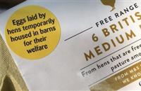 Millions of UK eggs to temporarily lose their free-range status