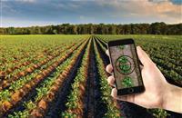 Agrimetrics brings potato yield model to the farmer's fingertips