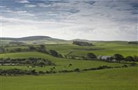 'Draconian powers': New Act threatens landowners' rights, warns association