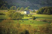 Scottish farm rents rise four per cent since last year