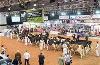 Prize fund reaches staggering height of £20K at UK Dairy Day 2017