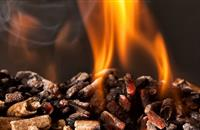 Farmers' union chairman among others to claim over £750,000 from RHI scheme