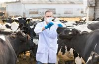 Antibiotic task force announces timetable to reduce dependency