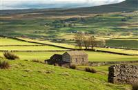 Farmland letting length increases in 2016 – but challenges remain
