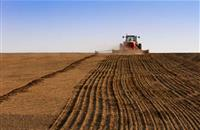 Report states agriculture needs stronger framework in tackling climate change